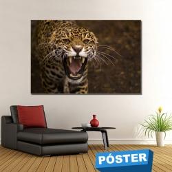 Poster Tigre Salvaje con Protector en Brillo